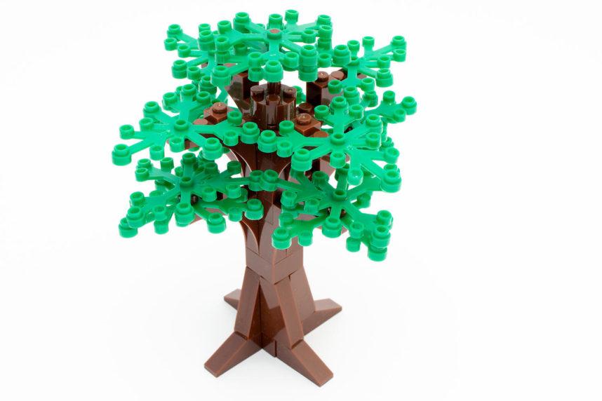 Dem üppigen Baum fehlt eine Grundplatte